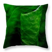 A Walk In The Woods 2 Throw Pillow