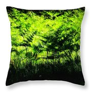 A Walk In The Woods 7 Throw Pillow