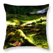 A Walk In The Woods 8 Throw Pillow