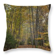 A Walk In The Woods II Throw Pillow