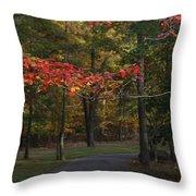 A Walk Through Fancher Davidge Park Throw Pillow
