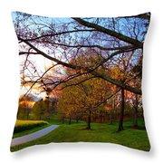 A Walk Through The Canola Fields At Sunset Throw Pillow