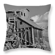 A Walk Through Time Throw Pillow
