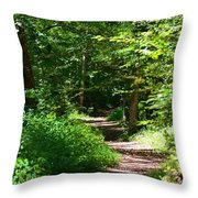 A Walk With God Throw Pillow