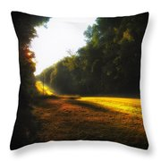 A Warm Michigan Sunrise Throw Pillow