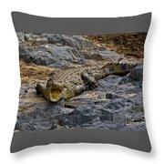 A Warning   #0557 Throw Pillow