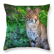 A Watchful Eye Throw Pillow by Mark Andrew Thomas