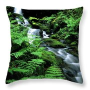 A Waterfall In Redwood National Park Throw Pillow