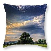A Welsh Meadow Throw Pillow