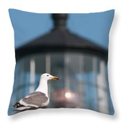 A Western Gull  Larus Occidentalis Throw Pillow