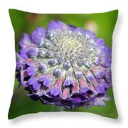 A Whatsis Squared Throw Pillow by Suzanne Gaff