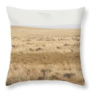 A White Mustang Feeds On Dry Grass Fields Of Arizona Throw Pillow