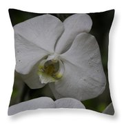 A White Orchid Flower Inside The National Orchid Throw Pillow