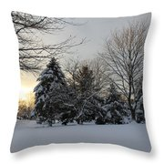 A White Winter's Morning Throw Pillow