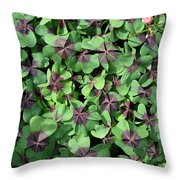 A Whole Lot Of Good Luck Throw Pillow