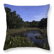 A Wide Expanse Of Marsh Throw Pillow