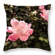 A Wild Rose Throw Pillow