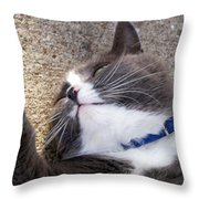 A Wink And A Smile Throw Pillow