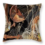 A Wink In Time Throw Pillow