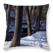 A Winter Day In New York Throw Pillow