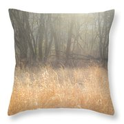 A Winter Glow Throw Pillow