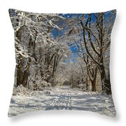 A Winter Road Throw Pillow