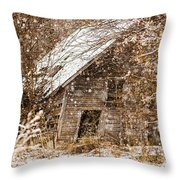 A Winter Shed Throw Pillow