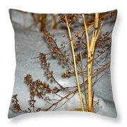 A Winter Tale  Throw Pillow