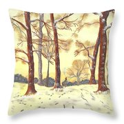 A Winters Glow Throw Pillow