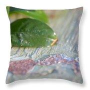 A Winter's Morning Light Throw Pillow