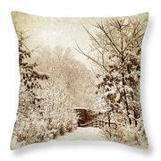 A Winter's Path Throw Pillow