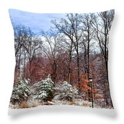 A Winters Scene Throw Pillow