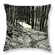 A Winter's Trail Throw Pillow