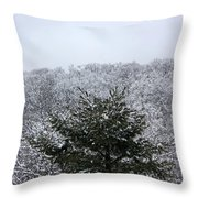 A Wintery View At The United States Military Academy At West Poi Throw Pillow