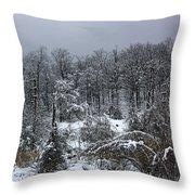A Wintery View At The United States Military Academy Throw Pillow