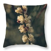 A Wish For You Throw Pillow by Laurie Search