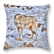 A Wolf In Winter Throw Pillow