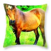 You Always Deserved A Wonderful Life  Throw Pillow