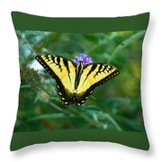 A Yellow Butterfly Throw Pillow