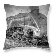A4 Class 60024 Kingfisher Throw Pillow