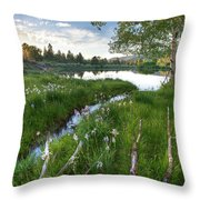 Abajo Mountains Near Montecello, Utah Throw Pillow