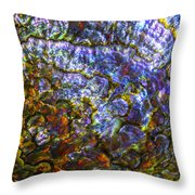 Abalone Shell 3 Throw Pillow