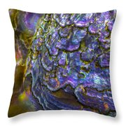 Abalone Shell 6 Throw Pillow