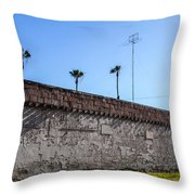 Abandoned 8 Throw Pillow