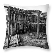 Abandoned Bird Observatory-bw Throw Pillow
