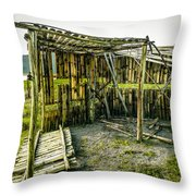 Abandoned Bird Observatory  Throw Pillow by Fabio Giannini