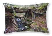 Abandoned Boston And Maine Railroad Timber Bridge - New Hampshire Usa Throw Pillow