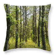 Abandoned Forest In Scott Arkansas Throw Pillow