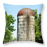 Abandoned Granary Throw Pillow