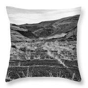 Abandoned Highway - Yakima County - Washington Throw Pillow